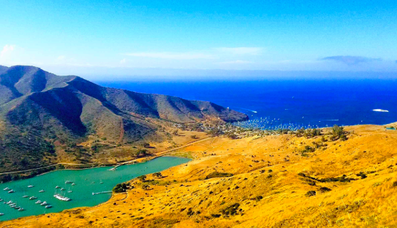 arial view of Catalina Island